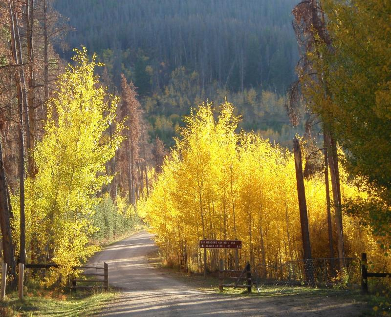 We will travel anywhere in Colorado for your Asbestos Consulting needs.